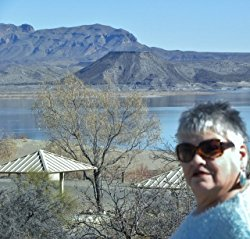 Jo Ann Wentzel Book Review Bio