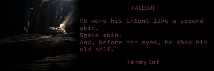 HARMONY HEADER BANNER Banner