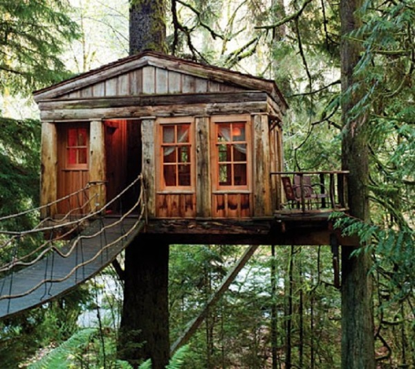 Flash Fiction week 9 another good treehouse