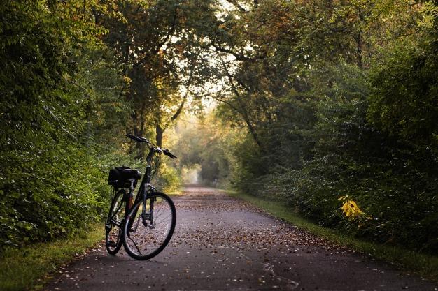 bike-2769021_1920